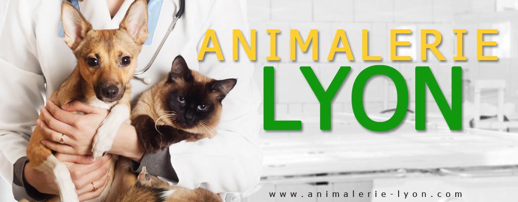 Animalerie lyon